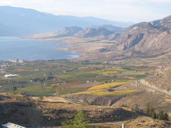 LAS osoyoos lake bench