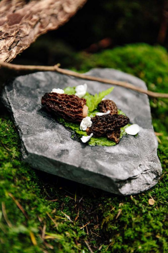 Forest_to_Table_YVR_IG-81 lo res