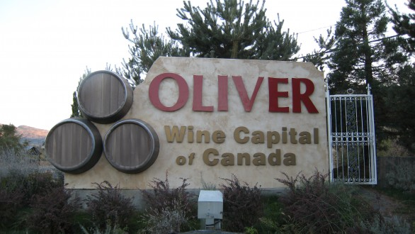oliver other town of south okanagan home to late ripening heat loving red varieties